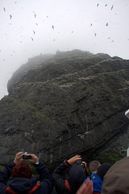 Peering up through the mist to the top of Stac Lee, Boreray, St Kilda