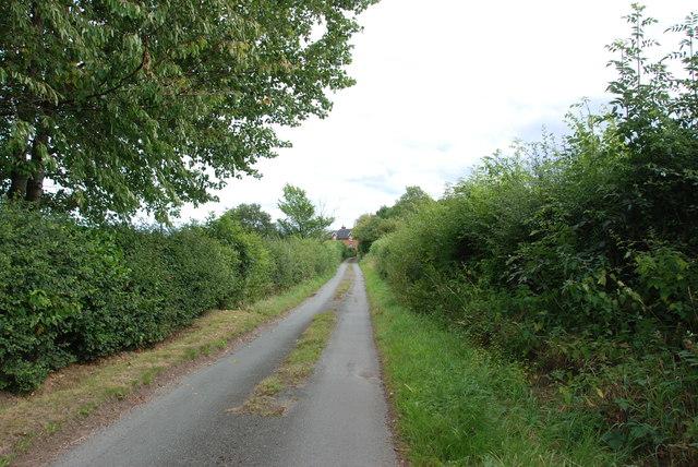 Narrow Lane to House