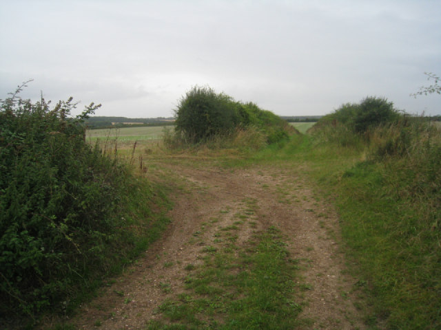 Track and dual field access