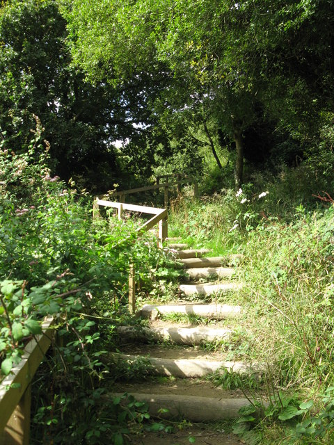 Steps on the Saxon Shore Way
