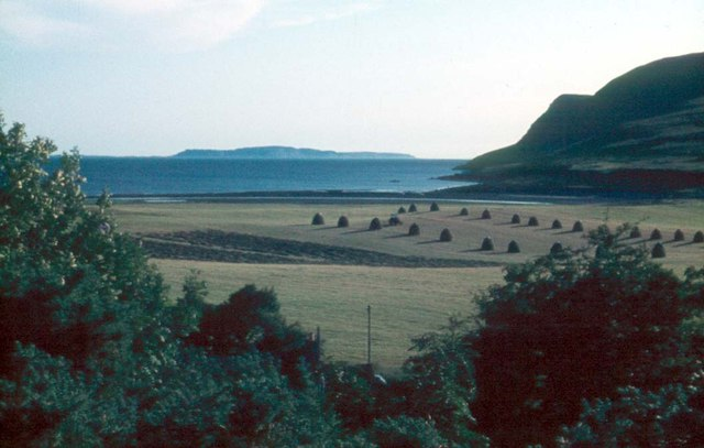 Hay field at Culnamean