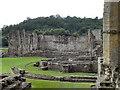 SE5785 : Rievaulx Abbey by David Dixon