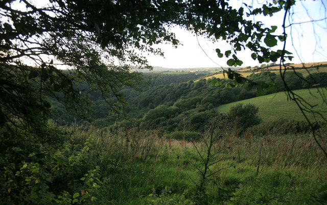 Evening view of the Seaton Valley