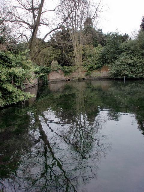 Lake, Bourne Hall, Ewell West, Surrey