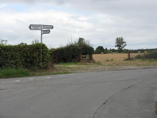 Lane junction near Vernalls Cottage