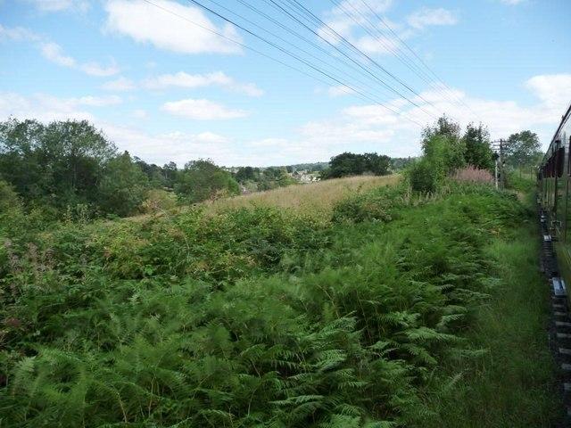 Bracken-filled shallow cutting, west of Arley station