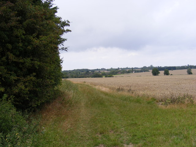 Field to the side of the footpath to Snipe Farm Lane