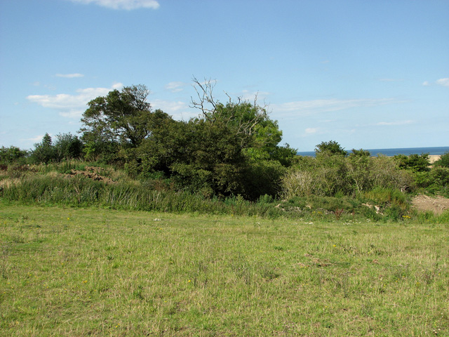 Thickbottom Pit, Cley