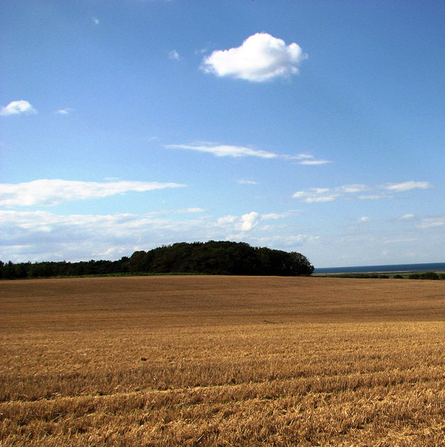 After the harvest, Cley