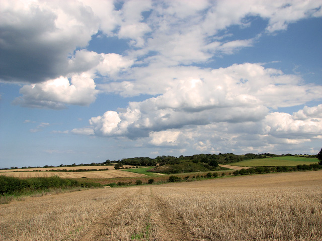 Great Hulver Hill as seen from Barn Drift, Cley