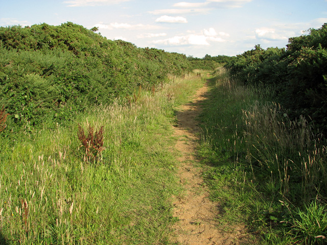 Footpath to Wiveton Downs