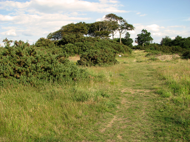 Footpath on Wiveton Downs