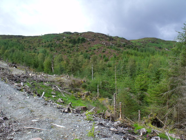 Service path in clearfell in Loch Ard Forest