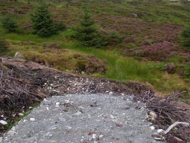 Top end of service path in Loch Ard Forest near Aberfoyle