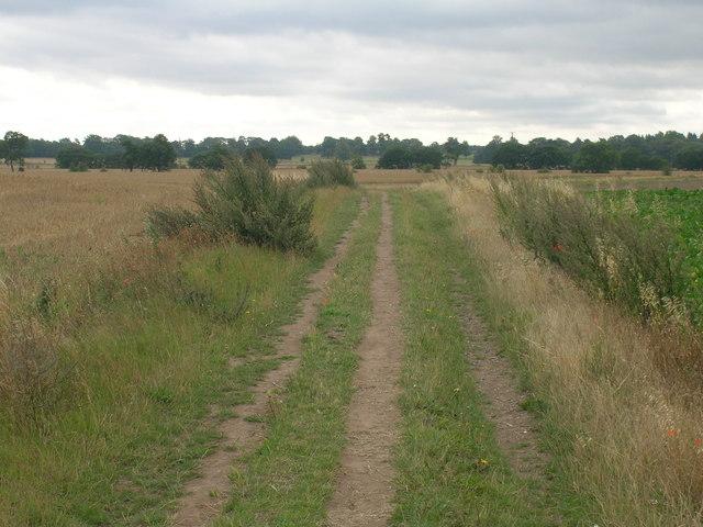 Hunster Flat Lane (footpath) heading south