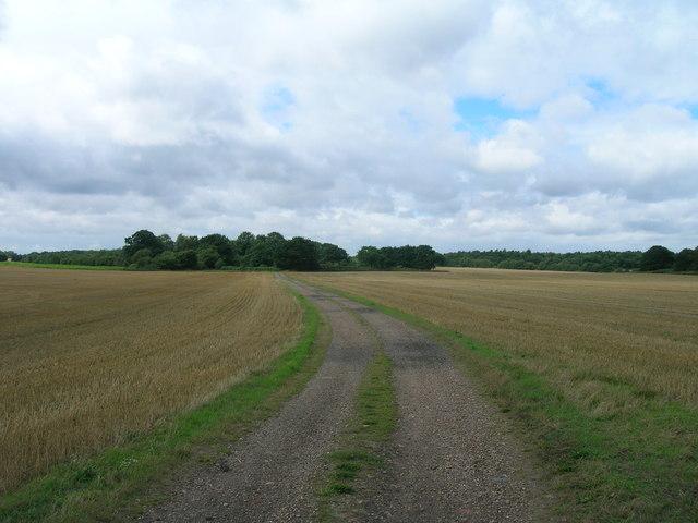 Farm track Finningley Park