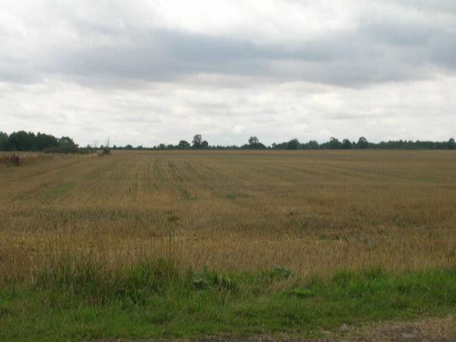 Farmland, Finningley Park