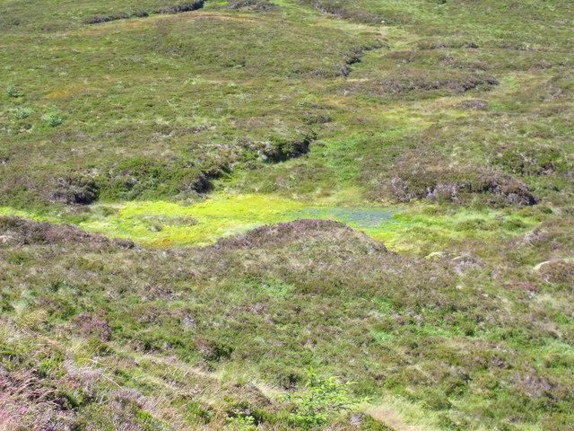 Bog north of Beinn Bhreac near Aberfoyle