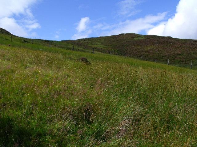 Wet boggy slopes north of Beinn Bhreac near Aberfoyle