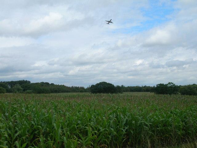 Farmland near Woodhouse Farm