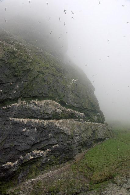 Mullach an Tuamail, Boreray, St Kilda
