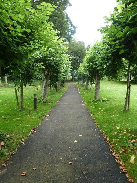 St Martin, Ellisfield: avenue