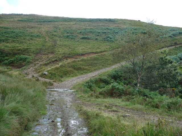 Path down to the ford on the Nant yr Hwyaid