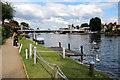 SU8586 : Thames Path, Marlow, Buckinghamshire by Christine Matthews