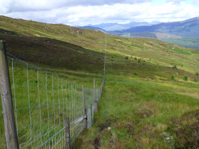 Fence-line bounding Loch Lomond National Park and Loch Ard Forest