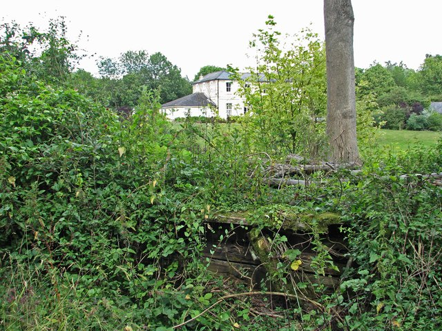 Bartlow Station: remains of the Audley End Branch Platform