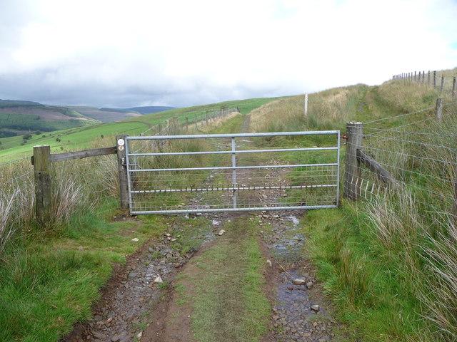 Gate on the hillside track