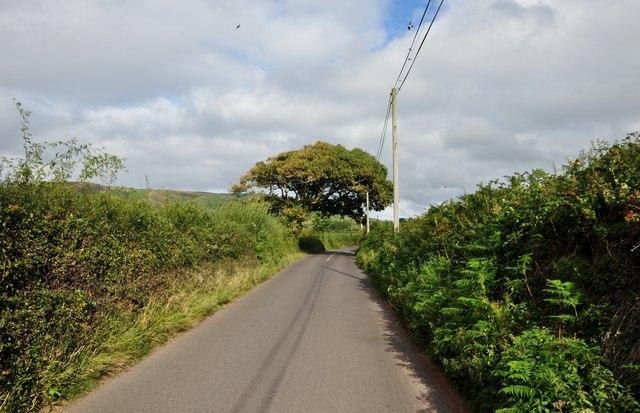West Somerset : Dunster Steep