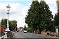 SU8586 : North of Suspension Bridge, Marlow, Buckinghamshire by Christine Matthews