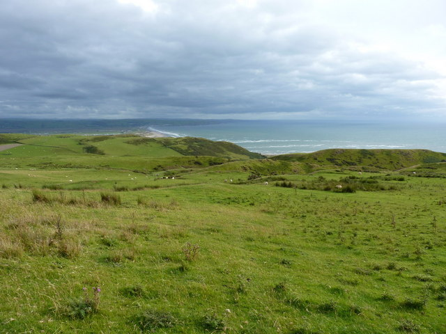 Sheep in fields above Cwm Safn-ast