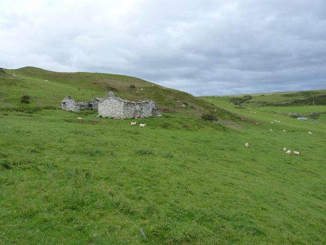 Trefeddian-fach farm