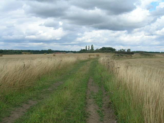 Farm track towards Tickhill Grange