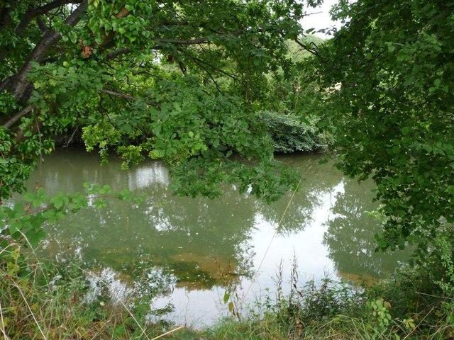 The River Teme