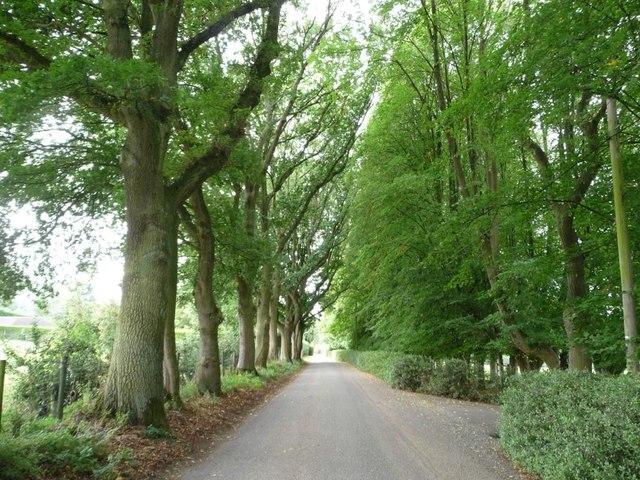 Steventon Road, Ludlow