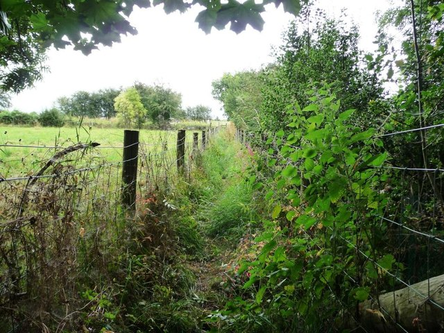 Fenced footpath heading to the railway line