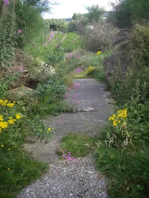 Access to Feughside picnic area (2011)