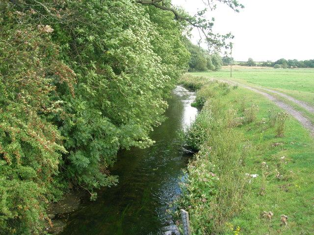 River Ryton at Serlby