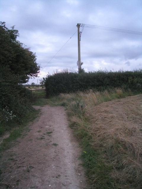 Path & field corner