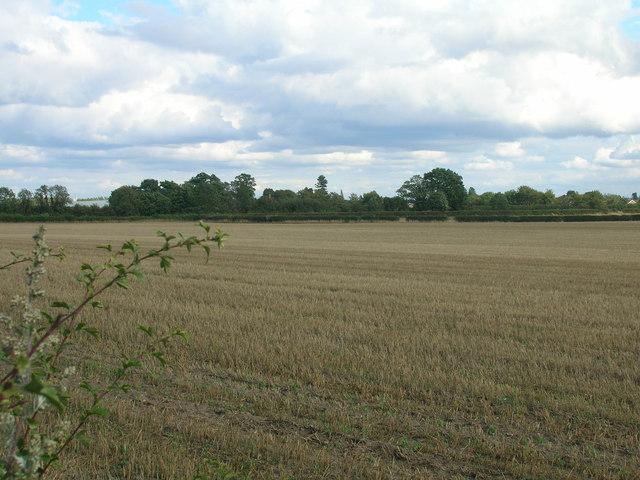 Farmland, Scrooby Top