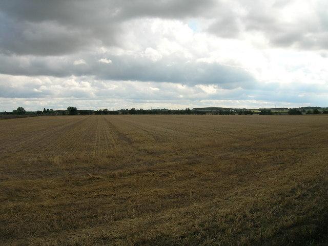 Farmland off Blyth Road