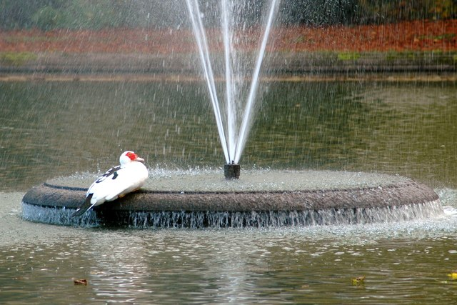Fountain in centre of cooling pond
