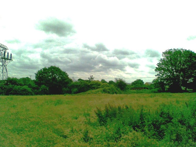 Field north of Sydney Bridge, Crewe