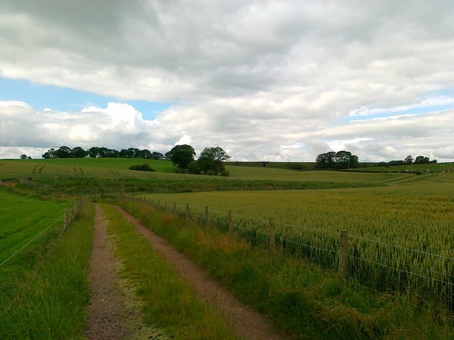 Track to slurry pit, Lowfield Cottages