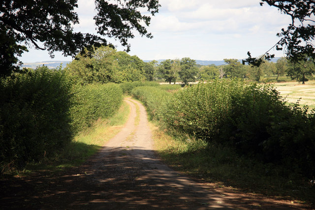 Minor road into the country