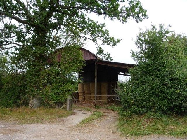 Dutch barn, with Swiss rolls