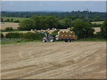 TQ2411 : Tractor at work near Fulking by Shazz